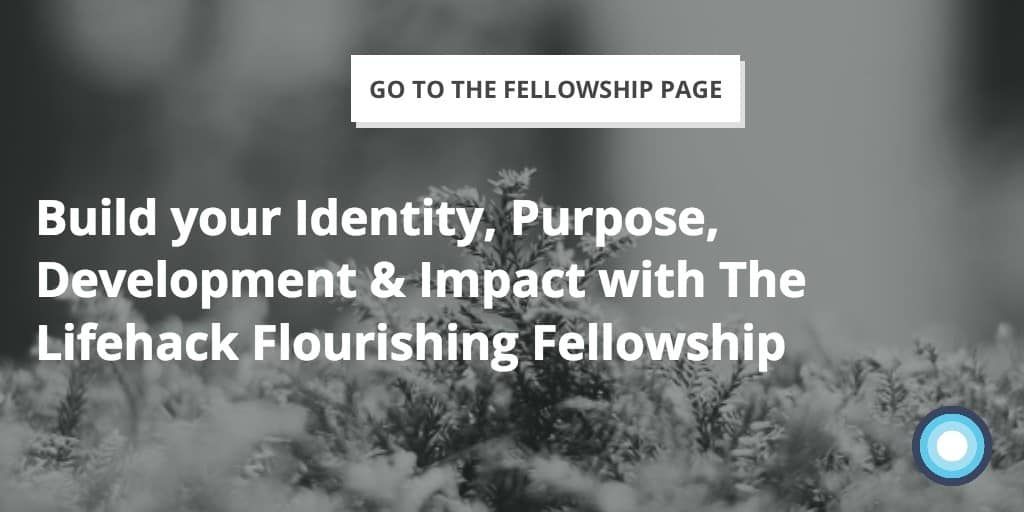 Identity, Purpose, Development, Impact - Lifehack Flourishing Fellowship